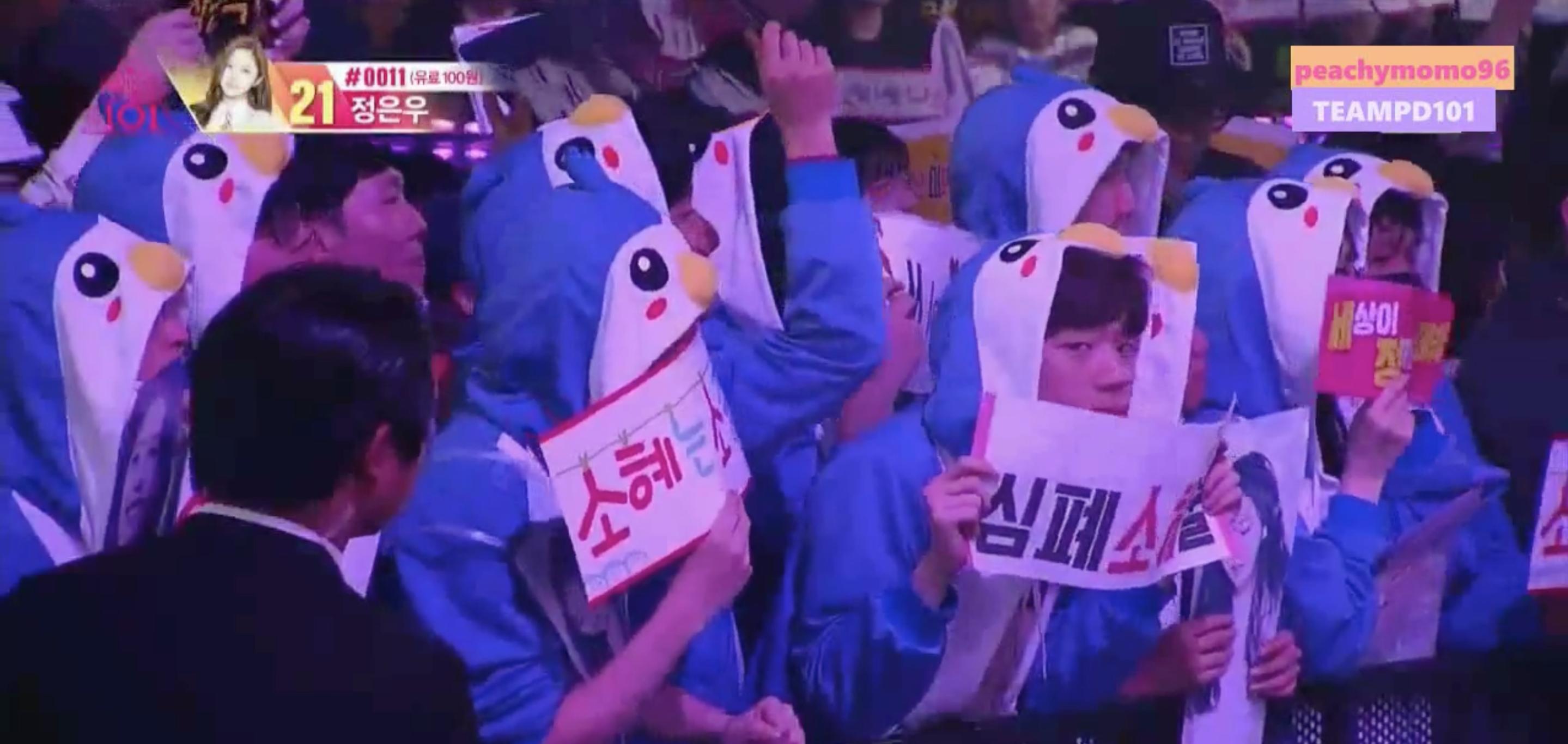 Sohye Fans